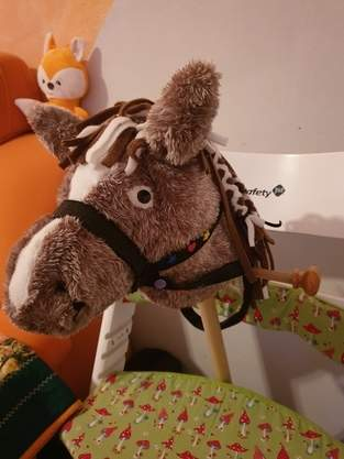 Emilie ihr erstes Pony