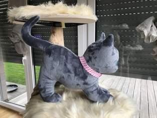 Makerist - Kätzchen  - 1