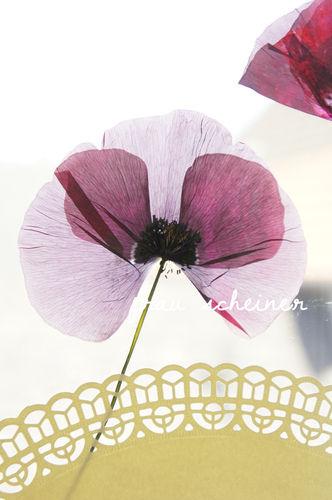 Makerist - DIY Blumen Fensterbild - DIY-Projekte - 1
