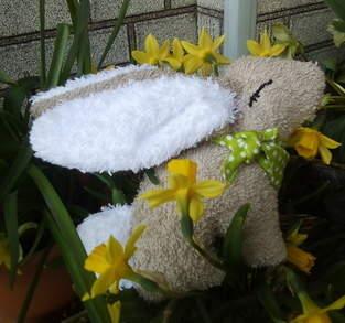 Makerist - Süßer Hase Eda  aus Frottee  - 1