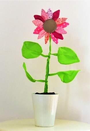 Meine Rosa Sonnenblume