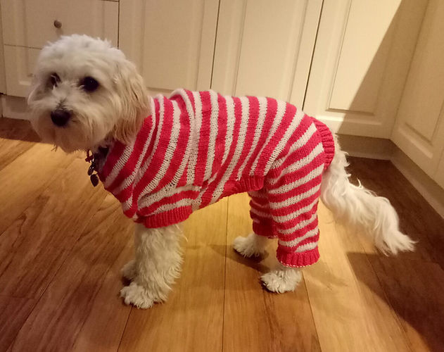 "Makerist - ""Rosie"" in her little candy cane jarmies - Knitting Showcase - 1"