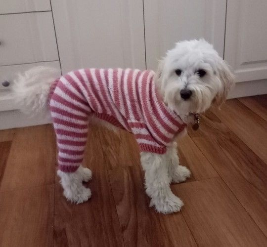 Makerist - Pink and white jarmies for Rosie - Knitting Showcase - 1