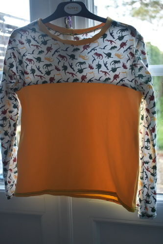 Makerist - Tee shirt manche longue dino - Créations de couture - 1
