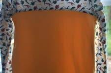 Makerist - Tee shirt manche longue dino - 1