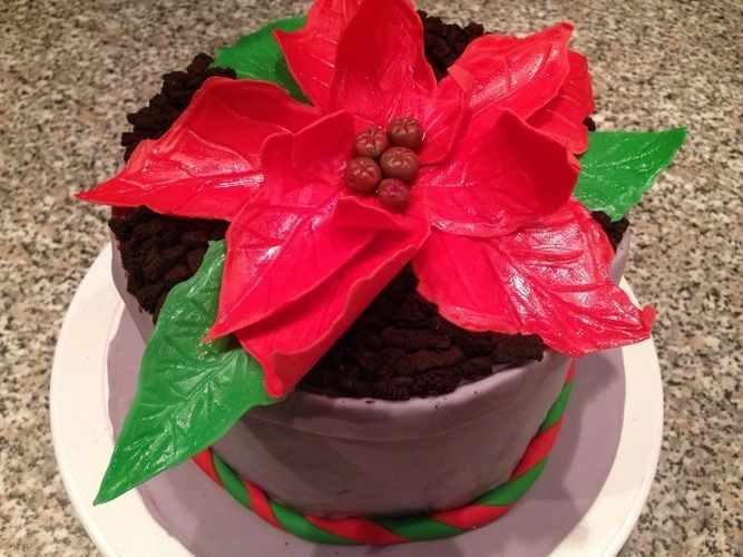 Makerist - ABO Weihnachtsstern - Torten, Cake Pops und Cupcakes - 1