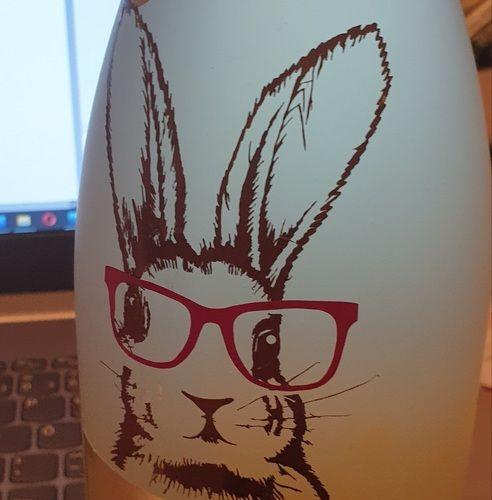 Makerist - Bunny als Ostermitbringsel - DIY-Projekte - 2
