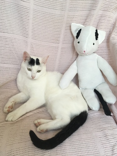 Makerist - Patron peluche de petit chat  - Créations de couture - 2