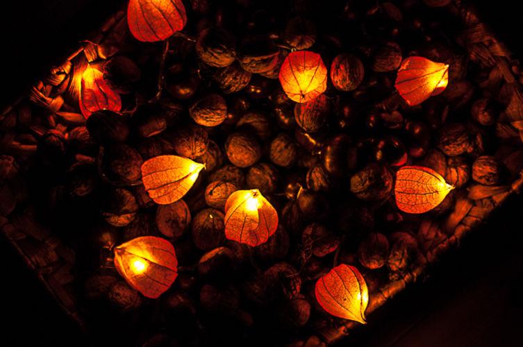 Makerist - Es wird herbstlich: Lampion-Lichterkette mit Physalisblüten - DIY-Projekte - 2