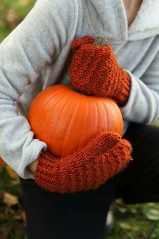 Fall Into Fall - pumpkin Season!