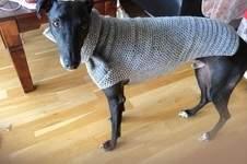 Makerist - Hundepulli gehäkelt, mit gestricktem Kragen - 1