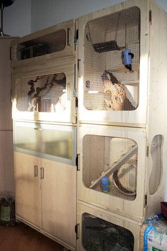 Makerist - Ein Heim für meine drei Fellnasen - DIY-Projekte - 1