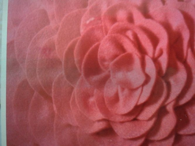 Makerist - Blütenkissen - Nähprojekte - 2